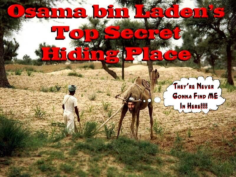 Osama Bin Ladin Found - and about time too