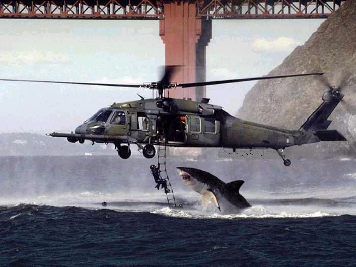 Oh so this is why they are called Navy Seals...