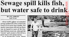 Sewerage spill kills fish