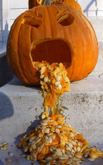 When pumpkin's eat too much
