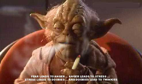 Words of wisdom from yoda